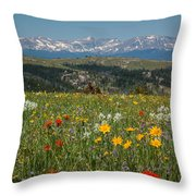 Wyoming's Winds Throw Pillow