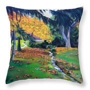 Wyomissing Creek Throw Pillow