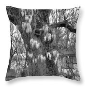 Wysteria Tree In Black And White Throw Pillow