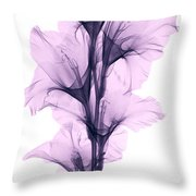 X-ray Of A Gladiola Flower Throw Pillow