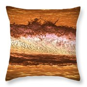 X-ray Of A Wave Throw Pillow