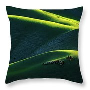 Xin Jiang 01 Throw Pillow