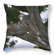 Y Knot Throw Pillow