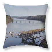Yadkin Below High Rock Dam Throw Pillow