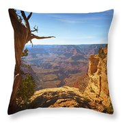 Yaki Point Throw Pillow by Susan Rissi Tregoning