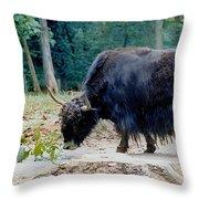 Yakity Yak Throw Pillow