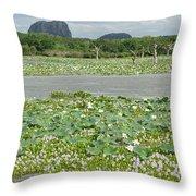 Yala National Park Throw Pillow