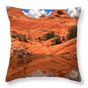 Yant Flat Canyon Reflections Throw Pillow