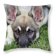 Yard Elf Throw Pillow