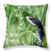 Yard Snake Throw Pillow