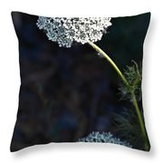 Yarrow In Stages Throw Pillow