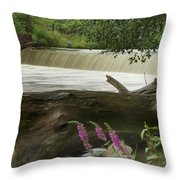 Yates Dam Throw Pillow