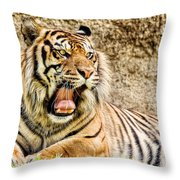 Yawning Bengal Tiger Throw Pillow