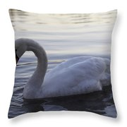 Ydan S Dream Throw Pillow