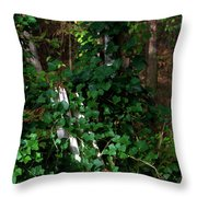 Ye Old Fence Post Throw Pillow