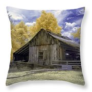Ye Old Stable Throw Pillow
