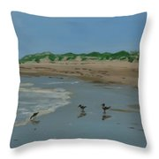 Year-rounders Throw Pillow