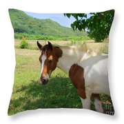 Yearling Colt In The Pasture Throw Pillow