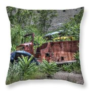 Years Of Public Service Throw Pillow