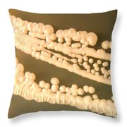 Yeast Throw Pillow