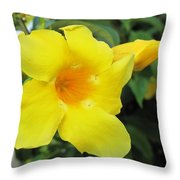 Yelllow Throw Pillow