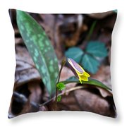Yelllow Trout Lily 1 Throw Pillow