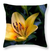 Yellow And Green No. 2 Throw Pillow