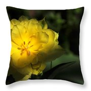 Yellow And Green No. 3 Throw Pillow