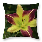 Yellow And Marron Flowering Lily In A Garden Throw Pillow