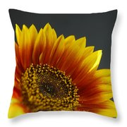 Yellow And Orange Gerber Throw Pillow
