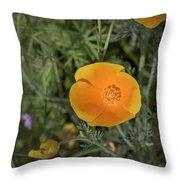 Yellow And Orange Poppy Throw Pillow