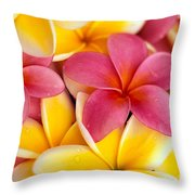 Yellow And Pink Throw Pillow