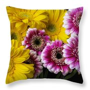 Yellow And Pink Gerbera Daisies Throw Pillow