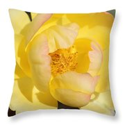 Yellow And Pink Tipped Rose Throw Pillow