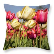 Yellow And Pink Tulips V 2018 Throw Pillow
