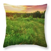 Retzer Nature Center - Yellow And Purple Summer Sunset  Throw Pillow