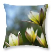Yellow And Purple Two Throw Pillow