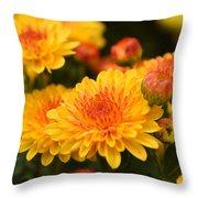Yellow And Red Autumn Mums Closeup I Throw Pillow