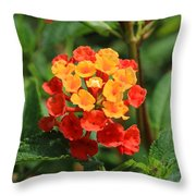 Yellow And Red Flowers On A Branch Throw Pillow