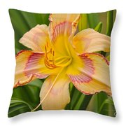 Yellow And Red Lily Throw Pillow