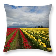 Yellow And Red Throw Pillow