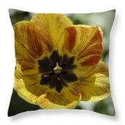 Yellow And Red Tulip Center Squared Throw Pillow
