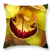 Yellow And Russet Orchid Throw Pillow
