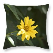 Yellow Beauty Throw Pillow