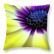 Yellow Beauty With A Hint Of Blue And Purple Throw Pillow