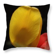 Yellow Bellied Throw Pillow