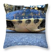 Yellow Bellied Turtle 004 Throw Pillow