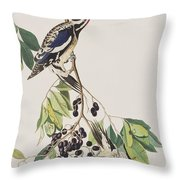 Yellow Bellied Woodpecker Throw Pillow