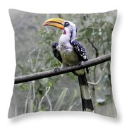 Yellow Billed Hornbill Throw Pillow