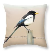 Yellow-billed Magpie Throw Pillow by Wingsdomain Art and Photography